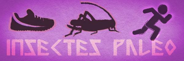 Faut-il manger des insectes ?